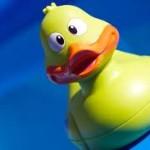 El Pato Bizco de Cri-Cri