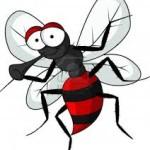 Mosquitos Trompeteros de Cri-Cri